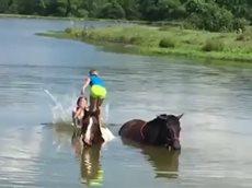 Дети Любят Лошадей. Забавное Видео с Маленькими Детьми